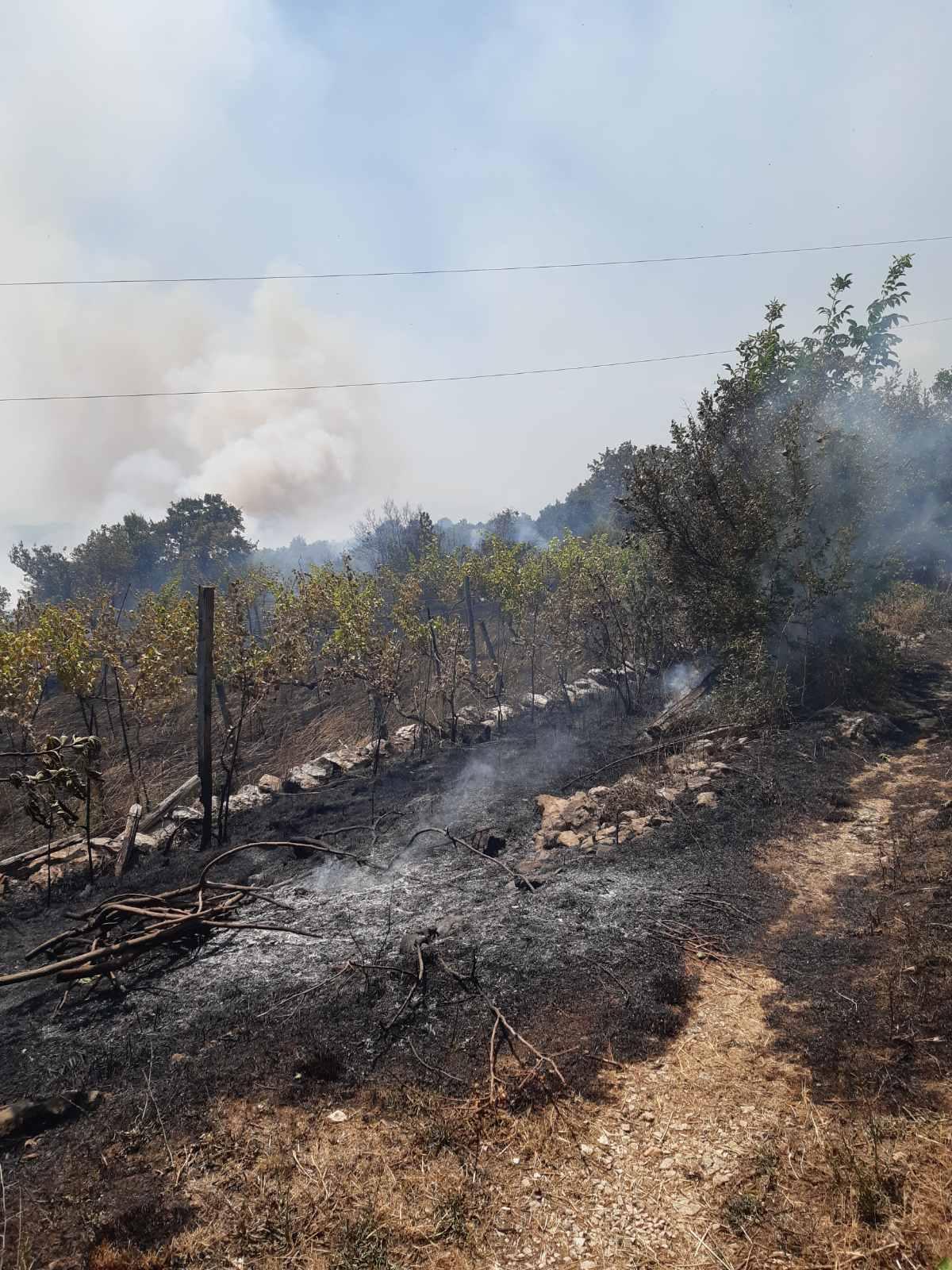 Služba zaštite i spašavanja na terenu; Požar u Piperima i dalje aktivan