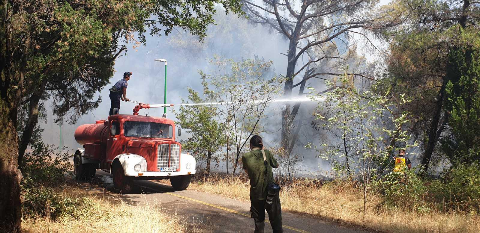 Požar na brdu Gorica; Ekipe Službe zaštite i spašavanja na terenu