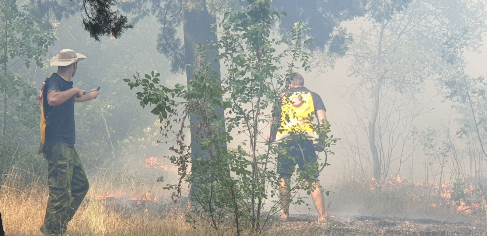 Požar na Gorici trenutno pod kontrolom; Očekujemo dodatnu podršku nadležnih državnih organa