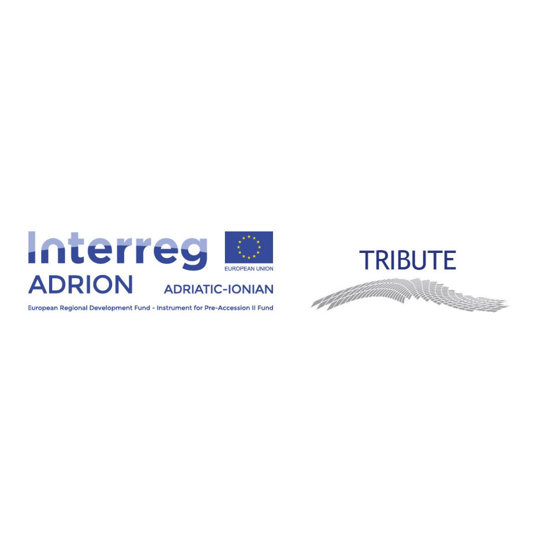 """Glavni grad kroz projekat TRIBUTE učestvovao na radionici """"Upravljanje najopterećenijim saobraćajnim koridorima"""""""